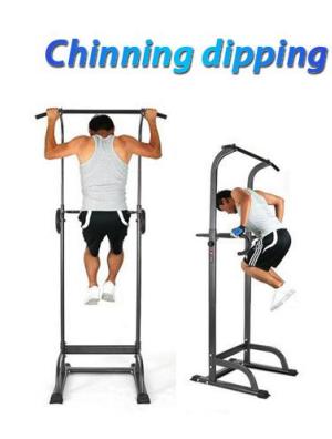 TSQ01 Chinning Dipping
